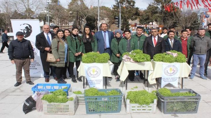 Erzincan'da liseliler serada ürettikleri marulları vatandaşlara dağıttı