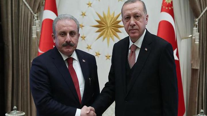 Cumhurbaşkanı Erdoğan, Meclis Başkanı Mustafa Şentop'u kabul etti