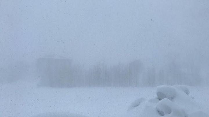 Bingöl Karlıova'da kar esareti: İş yerleri açılamadı, okullar tatil edildi