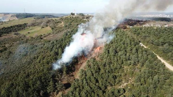 Sultangazi Cebeci köyündeki ormanlık alanda yangın çıktı