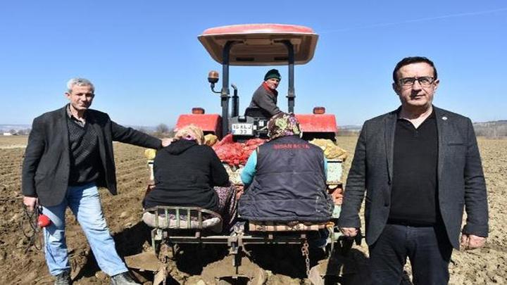 25 ilde patates ekiminin yasaklanması üzerine İnegöllüler 'sarı altın' dedikleri patatesin ekimine başladı