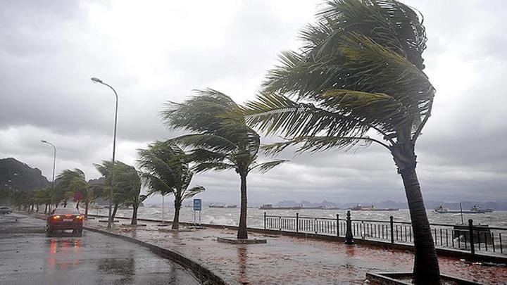 Meteoroloji'den Edirne için kuvvetli rüzgar ve fırtına uyarısı