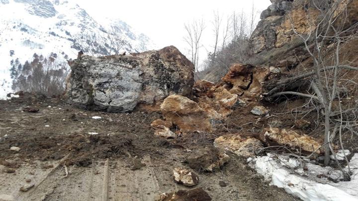 Gümüşhane'de köy yoluna düşen dev kaya kütlesi yolu ulaşıma kapattı