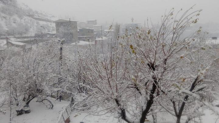 Hakkari ve Çukurca'da kar yağışı şiddetini artırdı