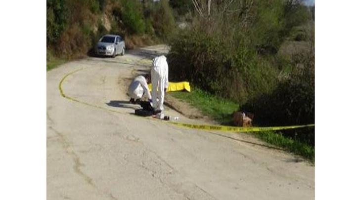 Osmaniye'de yol kenarında erkek cesedi bulundu, döve döve öldürüldüğü tespit edildi