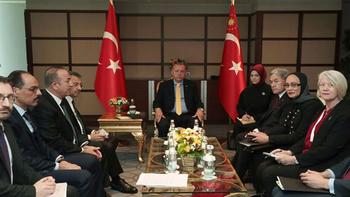Cumhurbaşkanı Recep Tayyip Erdoğan Yeni Zelanda Dışişleri Bakanı Winston Peters'i kabul etti