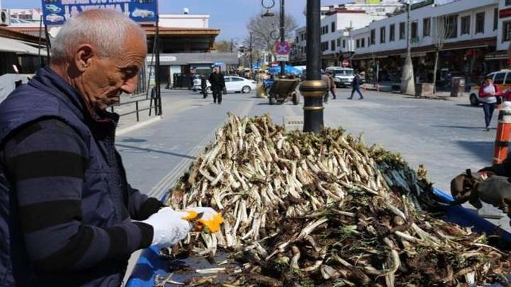 Diyarbakır'da kenger bitkisi satışları başladı