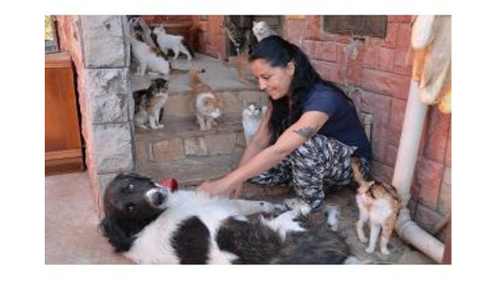 Mersin'de evinde 75 kedi ile yaşıyor