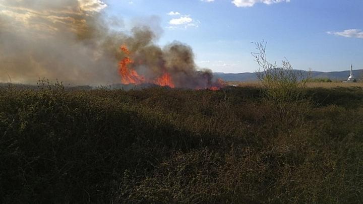 İznik'te sazlık yangını korkuttu