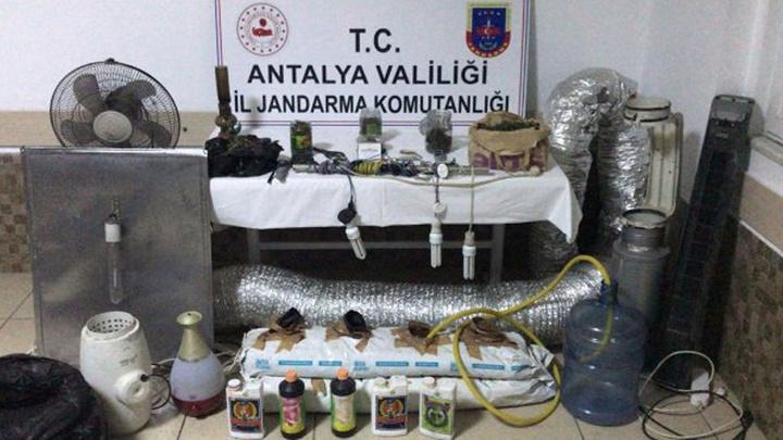 Antalya'da Hint keneviri üretmek için evinin bir odasını seraya dönüştüren kişi yakalandı