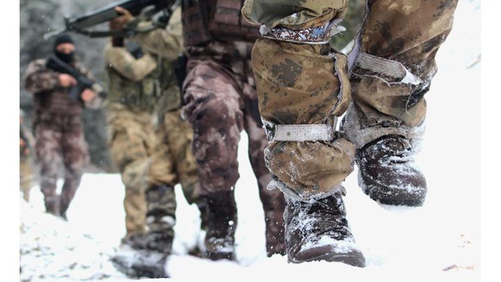 Giresun, Trabzon, Gümüşhane, Ordu ve Tokat kırsalında terör operasyonu başladı