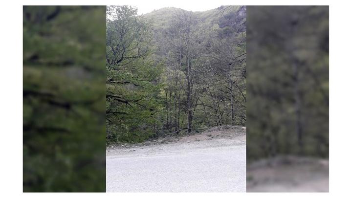 Karabük'te Şeker Kanyonu'nda yürüyüşe çıkan çift kayboldu