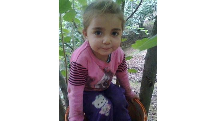 Diyarbakır'da kaybolan 3 yaşındaki kızın cansız bedeni derede bulundu