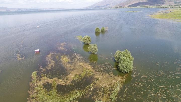 Elazığ'da kar eridikçe baraj doldu, içme suyu kuyuları su altında kaldı