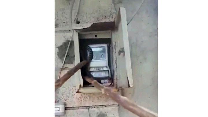Siirt'te bir evin elektrik panosuna yılan girdi