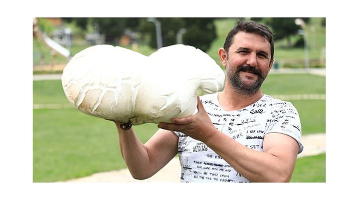 Denizli'de 7 kilogram ağırlığındaki dev mantar görenleri şaşırttı