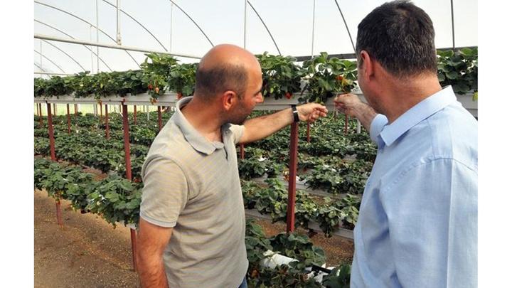 Yozgatlı girişimci jeneratör ile topraksız tarım yapıyor