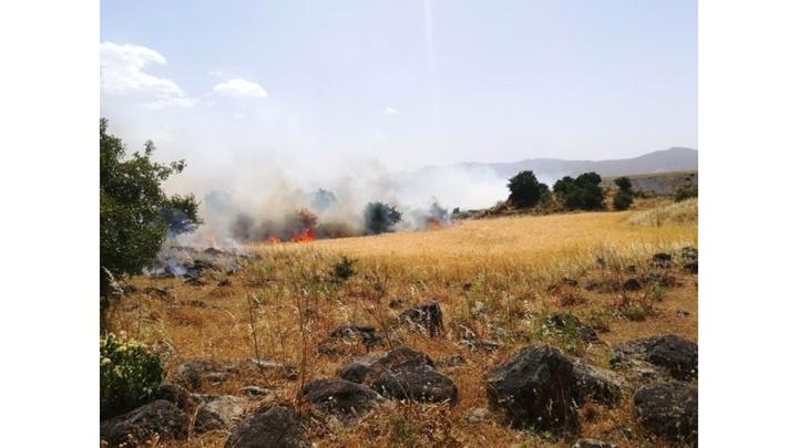 İslahiye'de 250 dönümlük ekili alan yangında  kül oldu