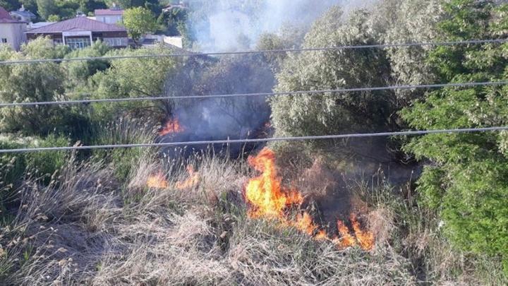 Bitlis'te ağaç polenleri yangına sebep oldu
