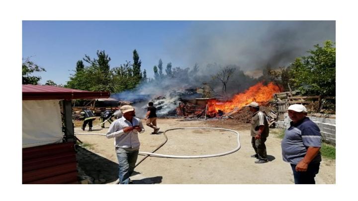Pamukkale'de yangında hayvanlar telef oldu, traktör ve saman balyaları yandı