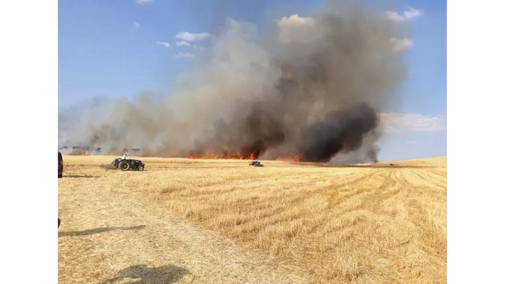 Bozova'da 200 dönümlük arpa tarlasında hasat yapıldığı sırada yangın çıktı