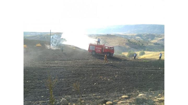 Adıyaman'da buğday tarlasında yangın çıktı, 20 dönümlük tarla küle döndü