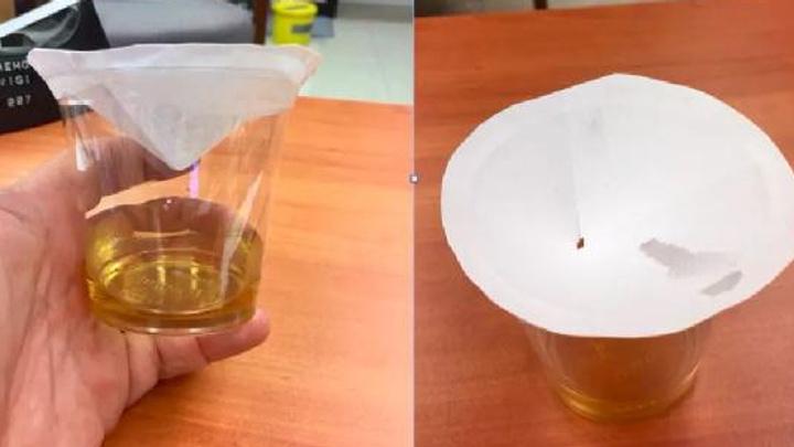 Kanadalı bilim adamından sineklerden kurtulma formülü