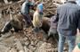 Denizli'de meydana gelen depremde ahır çöktü, inekler enkaz altında kaldı