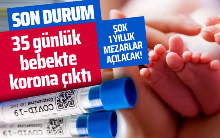 Hollanda'da 14 Türk koronavirüs nedeniyle öldü dünyadan koronavirüs haberleri