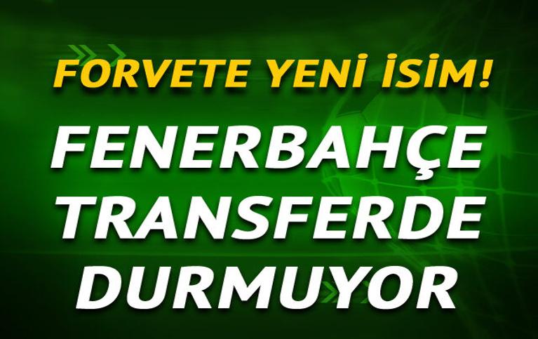 Fenerbahçe'de forvet harekatı