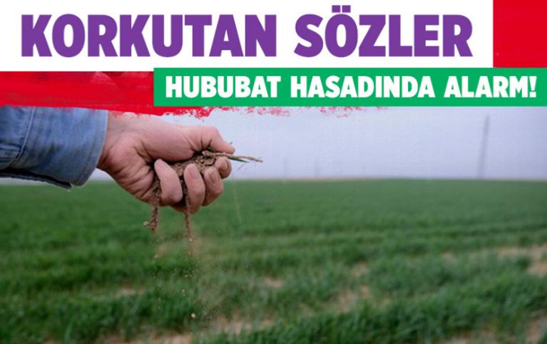 Biçerdöverler hububat hasadı için tarlalara giremeyebilir