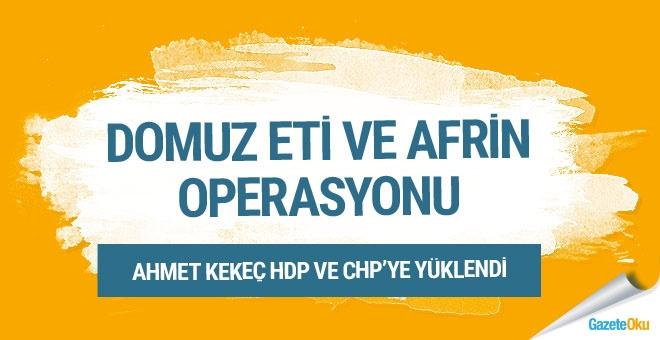 Domuz eti ve Afrin operasyonu!