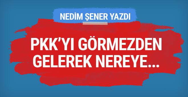 PKK'yı görmezden gelerek nereye…